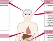 Mitochondriale ziekten: divers en complex