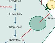 Zijn statines effectief en veilig in de behandeling van kinderen met familiaire hypercholesterolemie?