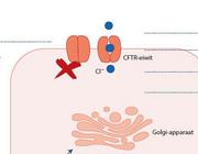 Lumacaftor/ivacaftor (Orkambi®): nieuw therapeutisch middel bij cystische fibrose