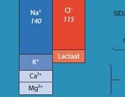 Volumerereanimatie: fysiologisch zout of gebalanceerde vloeistof?